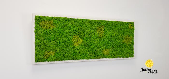 Tablou licheni naturali stabilizati, culoare Grass Green Light cu insertii de Spring [3]
