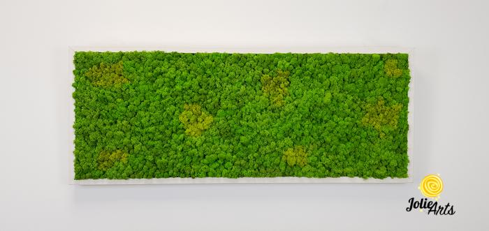 Tablou licheni naturali stabilizati, culoare Grass Green Light cu insertii de Spring [2]