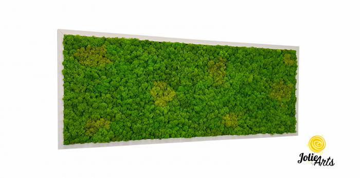 Tablou licheni naturali stabilizati, culoare Grass Green Light cu insertii de Spring [0]