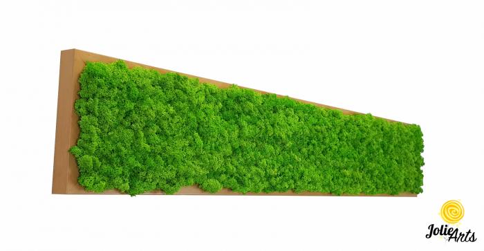 Tablou cu licheni naturali stabilizati, culoare Grass Green Light [0]