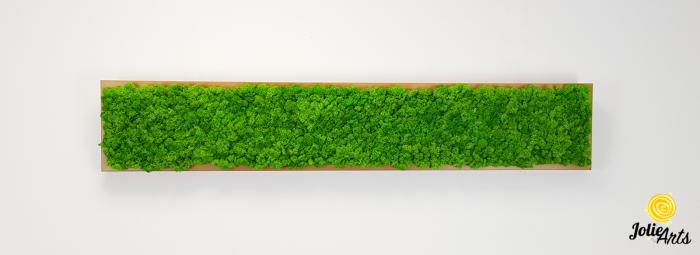 Tablou cu licheni naturali stabilizati, culoare Grass Green Light [2]