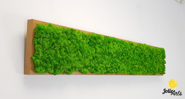 Tablou cu licheni naturali stabilizati, culoare Grass Green Light [3]