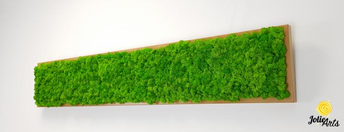 Tablou cu licheni naturali stabilizati, culoare Grass Green Light [1]