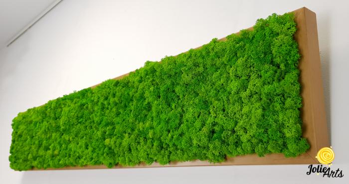 Tablou cu licheni naturali stabilizati, culoare Grass Green Light [4]