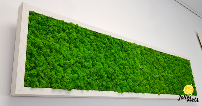 Tablou licheni naturali stabilizati, culoare verde deschis, rama argintie 20 X 80 cm, Jolie Arts, www.tablouriculicheni.ro-2 [5]