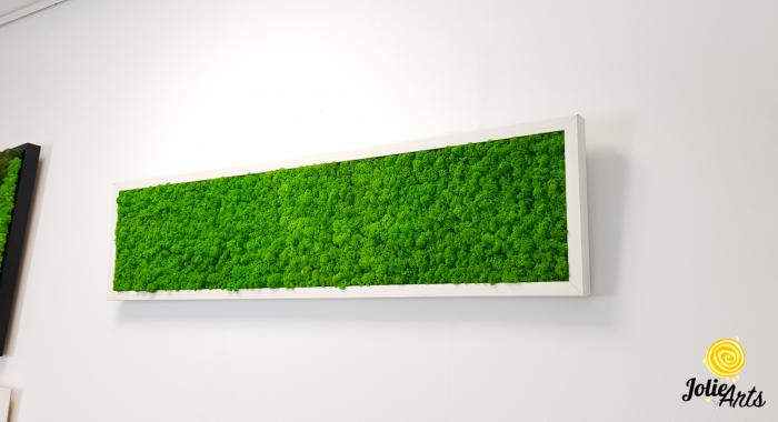 Tablou licheni naturali stabilizati, culoare verde deschis, rama argintie 20 X 80 cm, Jolie Arts, www.tablouriculicheni.ro-2 [1]