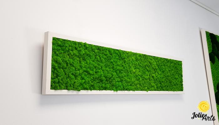 Tablou licheni naturali stabilizati, culoare verde deschis, rama argintie 20 X 80 cm, Jolie Arts, www.tablouriculicheni.ro-2 [3]