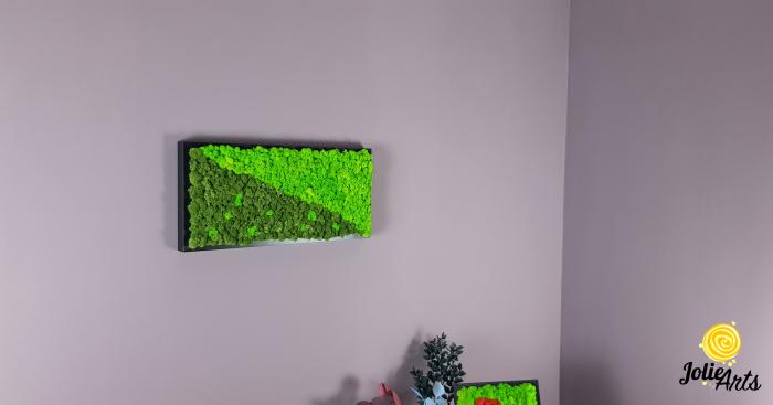 Tablou licheni naturali stabilizati, dimensiune 25 x 50 cm, rama neagra [3]