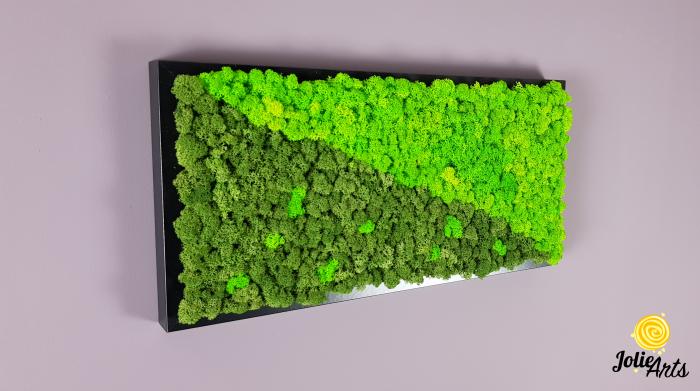 Tablou licheni naturali stabilizati, dimensiune 25 x 50 cm, rama neagra [1]