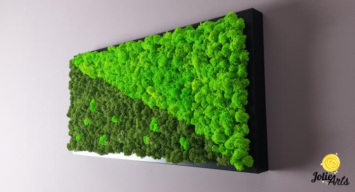 Tablou licheni naturali stabilizati, dimensiune 25 x 50 cm, rama neagra [2]