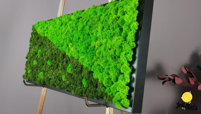 Tablou licheni naturali stabilizati, dimensiune 25 x 50 cm, rama neagra [4]