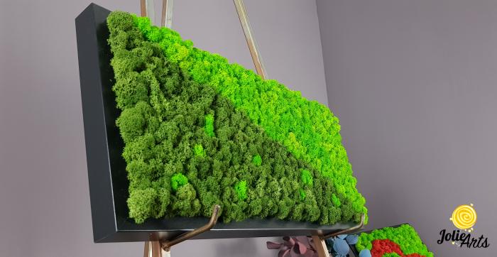 Tablou licheni naturali stabilizati, dimensiune 25 x 50 cm, rama neagra [5]