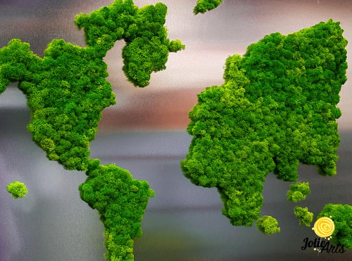 Tablou licheni naturali stabilizati, harta lumii, Joie Arts, dimensiune 60 x 90 cm [1]