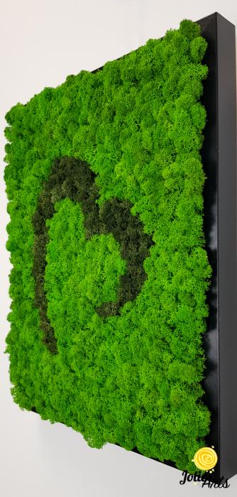 Tablou licheni naturali stabilizati Jolie Arts, model inima stilizata, doua nuante de verde [4]