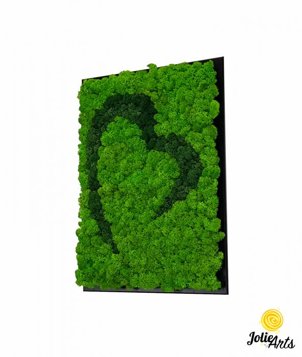 Tablou licheni naturali stabilizati Jolie Arts, model inima stilizata, doua nuante de verde [0]