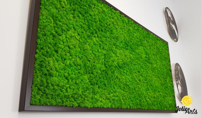 Tablou licheni naturali stabilizati, Jolie Arts, www.tablouriculicheni.ro-3 [4]