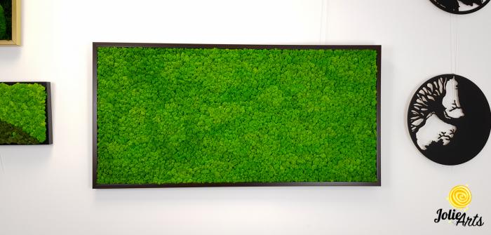 Tablou licheni naturali stabilizati, Jolie Arts, www.tablouriculicheni.ro-3 [2]