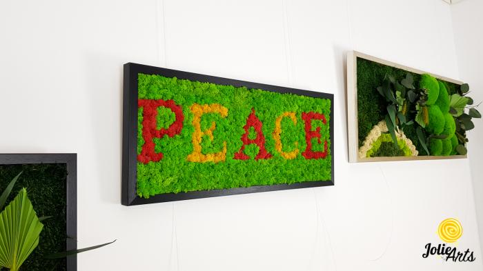 Tablou mesaj, logo personalizat cu licheni naturali stabilizati, dimensiune 30 x 70 cm [1]