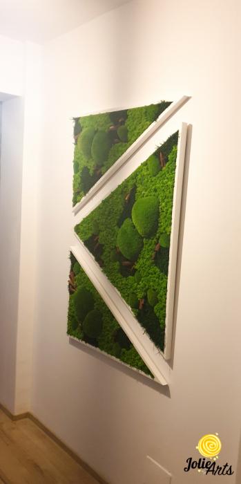 Tablouri cu licheni, muschi bombati, plante naturale stabilizate, set triunghiuri [4]