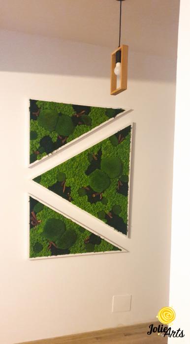 Tablouri cu licheni, muschi bombati, plante naturale stabilizate, set triunghiuri [5]