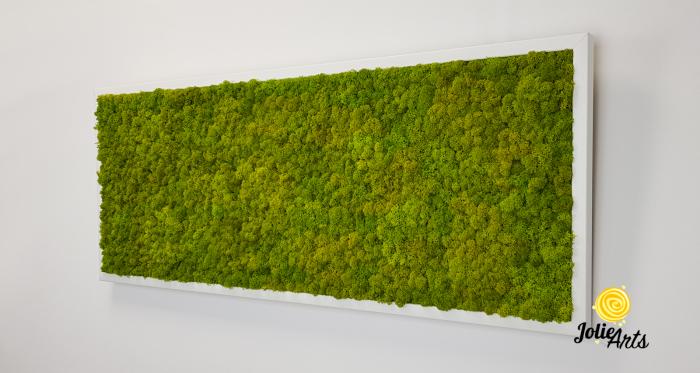 Verde Spring [1]