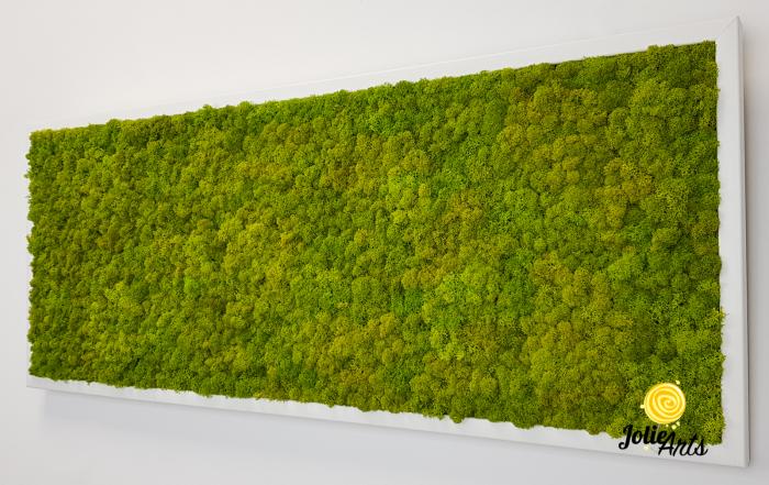Verde Spring [5]