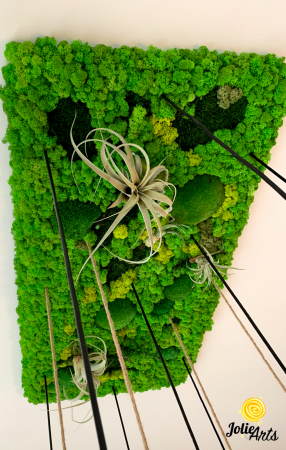 Decoratiuni cu licheni, muschi, plante stabilizate, plante aeriene Jolie Arts [4]