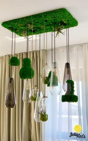 Decoratiuni cu licheni, muschi, plante stabilizate, plante aeriene Jolie Arts [0]