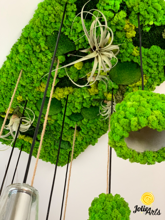 Decoratiuni cu licheni, muschi, plante stabilizate, plante aeriene Jolie Arts [5]