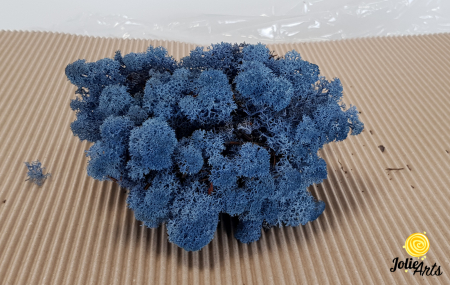 Licheni decorativi naturali stabilizati, culoare Albastru Azur, Azur Blue 86, Jolie Arts [1]
