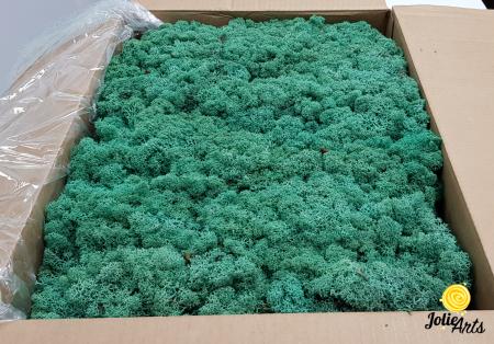 Licheni decorativi naturali stabilizati, Culoare Verde Pacific, Pacific Green 87, Jolie Arts [0]