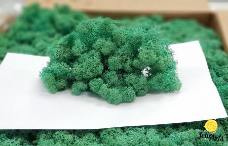 Licheni decorativi naturali stabilizati, Culoare Verde Pacific, Pacific Green 87, Jolie Arts [1]