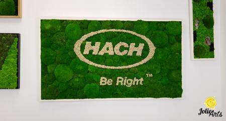 Logo personalizat, litere volumetrice, decor licheni naturali stabilizati si muschi bombati, Jolie Arts [2]