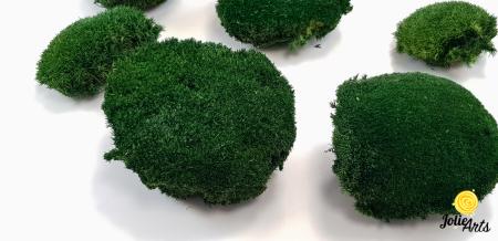 Muschi bombat natural stabilizat, verde inchis [2]