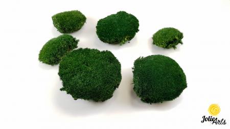 Muschi bombat natural stabilizat, verde inchis [3]