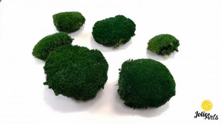 Muschi bombat natural stabilizat, verde inchis [5]