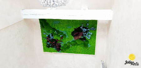 Tablou licheni, muschi bombati si plante naturale stabilizate Jolie Arts [2]