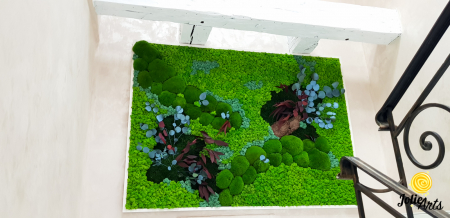 Tablou licheni, muschi bombati si plante naturale stabilizate Jolie Arts [0]