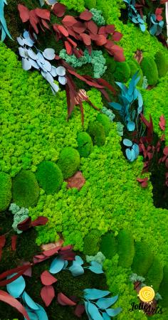 Tablou licheni, muschi bombati si plante naturale stabilizate Jolie Arts [3]