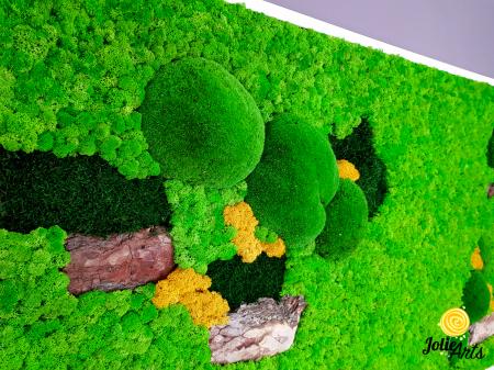 Tablou licheni, muschi bombati si elemente naturale stabilizate, Jolie Arts [4]