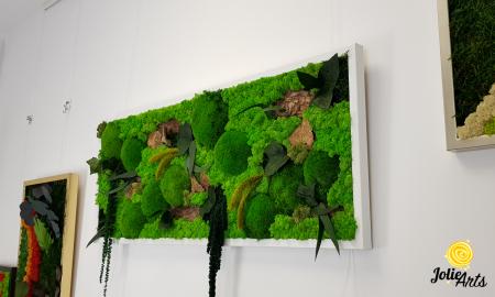 Tablou licheni, muschi bombati de padure si plante naturale stabilizate Jolie Arts, model Amaranthus [2]