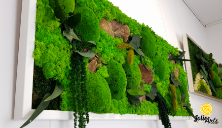 Tablou licheni, muschi bombati de padure si plante naturale stabilizate Jolie Arts, model Amaranthus [3]
