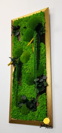 Amaranthus Verde Personalizat [5]