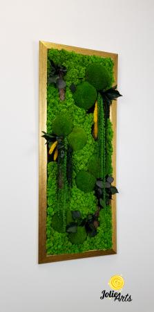 Amaranthus Verde Personalizat [3]