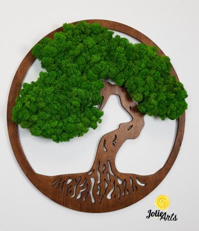 Copacul vietii decorat cu licheni naturali stabilizati, suport culoare maro [4]