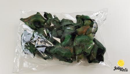 Flori Palmier culoare verde [2]