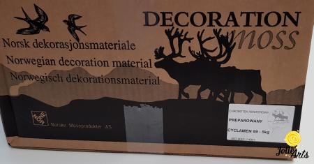 Licheni decorativi naturali stabilizati, culoare Cyclamen 69 [3]