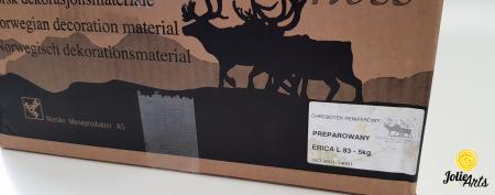 Licheni decorativi naturali stabilizati, culoare Mov Erica L, Erica L 83 [2]