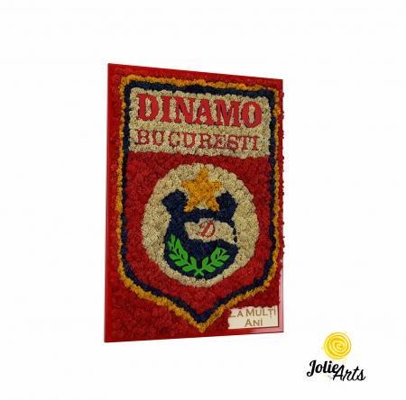 Logo Dinamo cu licheni [0]