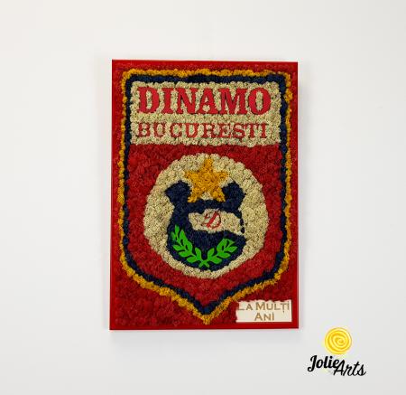 Logo Dinamo cu licheni [2]